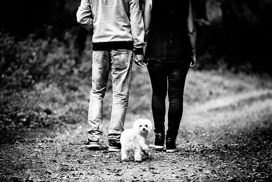 pareja de espaldas paseando a su perro en una preboda en navarra