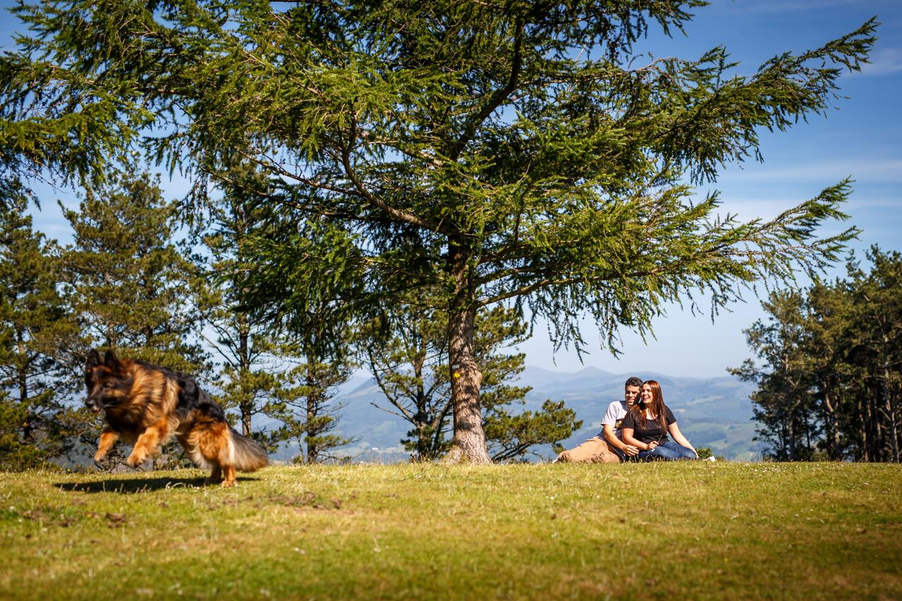 pareja debajo del arbol mirando a su perro correr por la ladera de erlaitz