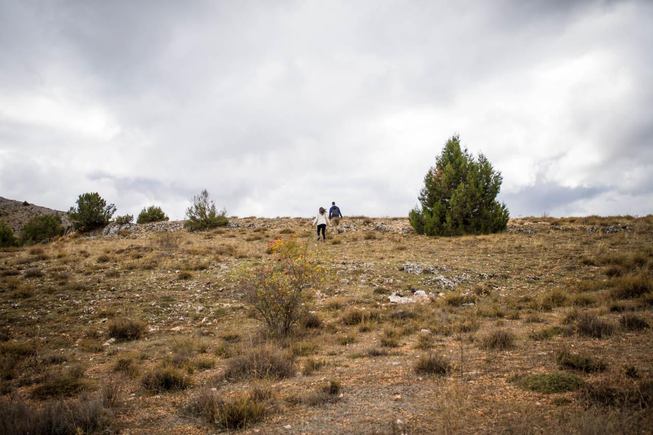 los novios paseando por una campa en una preboda en Soria